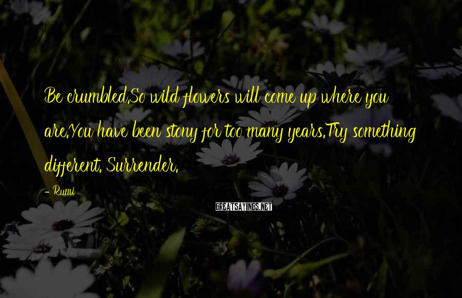Rumi Sayings: Be crumbled.So wild flowers will come up where you are.You have been stony for too