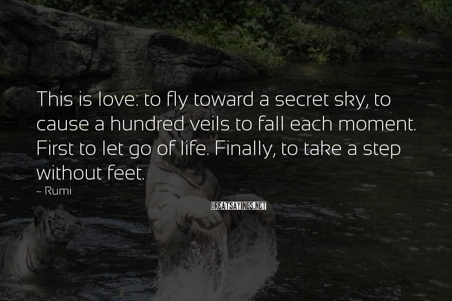 Rumi Sayings: This is love: to fly toward a secret sky, to cause a hundred veils to