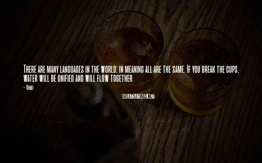Rumi Sayings: There are many languages in the world; in meaning all are the same. If you