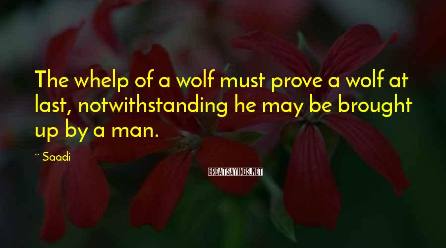 Saadi Sayings: The whelp of a wolf must prove a wolf at last, notwithstanding he may be