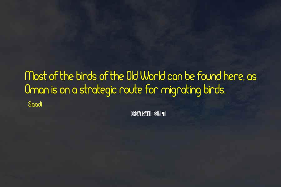 Saadi Sayings: Most of the birds of the Old World can be found here, as Oman is