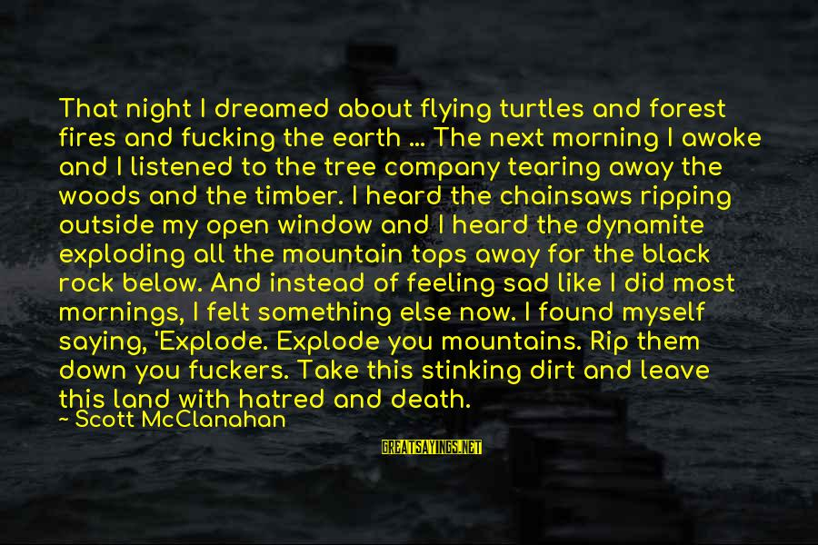 Sad Leave Sayings By Scott McClanahan: That night I dreamed about flying turtles and forest fires and fucking the earth ...