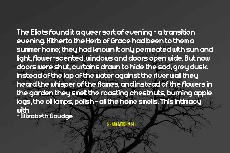Sad Water Sayings By Elizabeth Goudge: The Eliots found it a queer sort of evening - a transition evening. Hitherto the