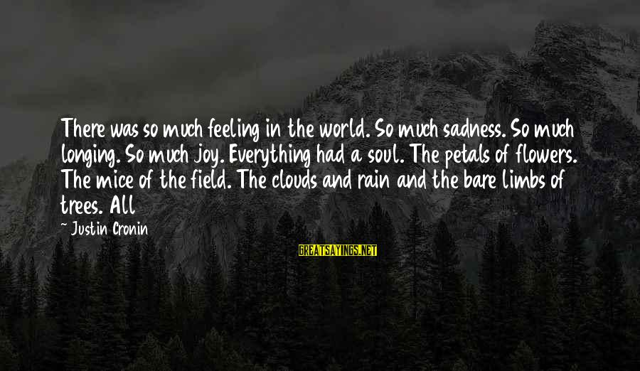 Sadness And Joy Sayings By Justin Cronin: There was so much feeling in the world. So much sadness. So much longing. So