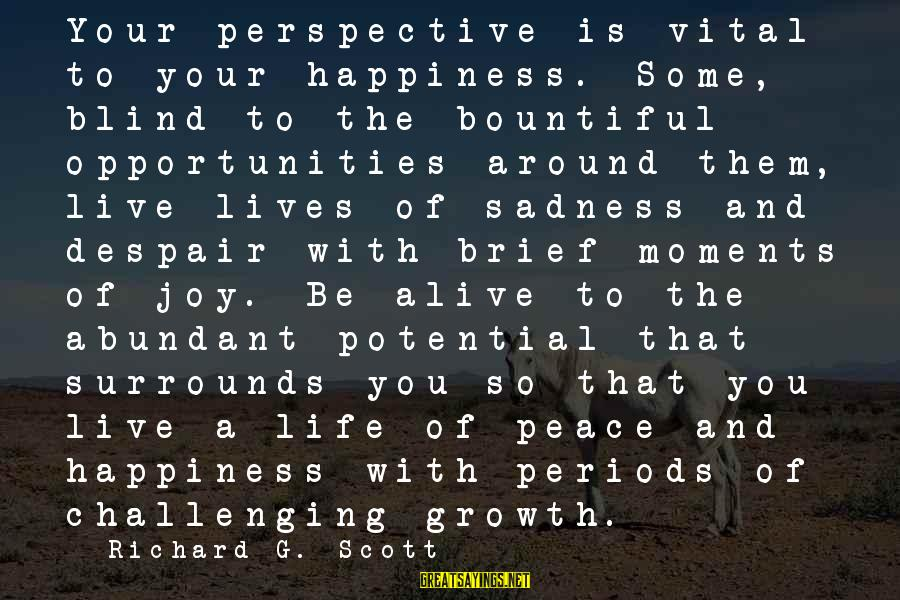 Sadness And Joy Sayings By Richard G. Scott: Your perspective is vital to your happiness. Some, blind to the bountiful opportunities around them,