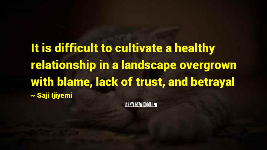 Saji Ijiyemi Sayings: It is difficult to cultivate a healthy relationship in a landscape overgrown with blame, lack
