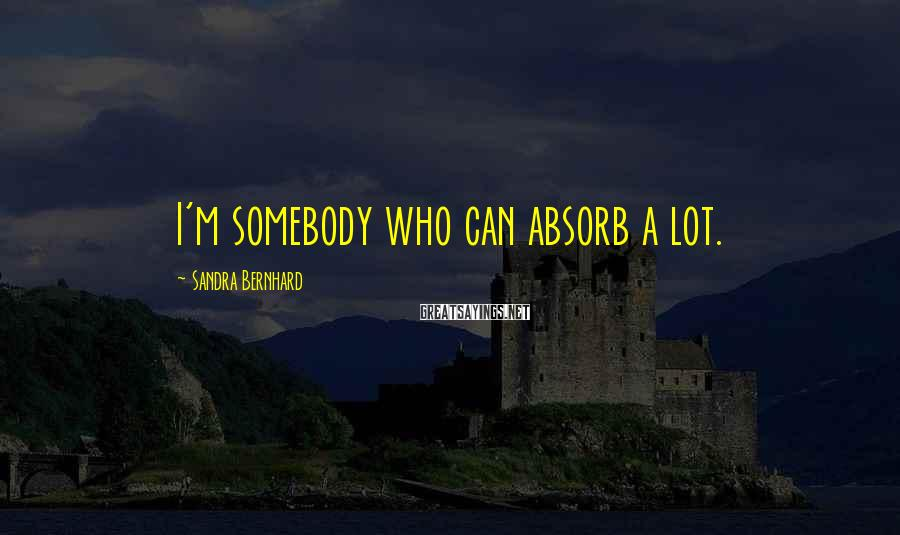 Sandra Bernhard Sayings: I'm somebody who can absorb a lot.
