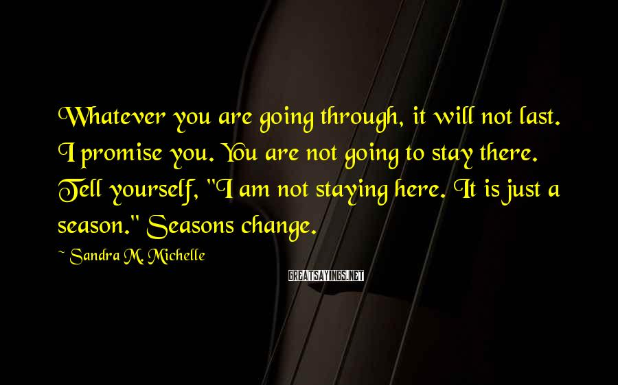 Sandra M. Michelle Sayings: Whatever you are going through, it will not last. I promise you. You are not