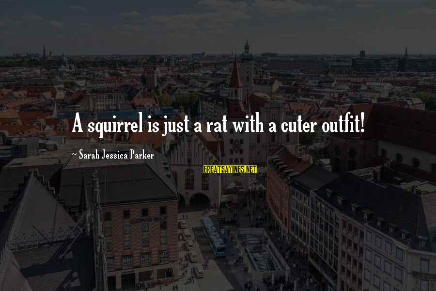 Sarah Jessica Sayings By Sarah Jessica Parker: A squirrel is just a rat with a cuter outfit!