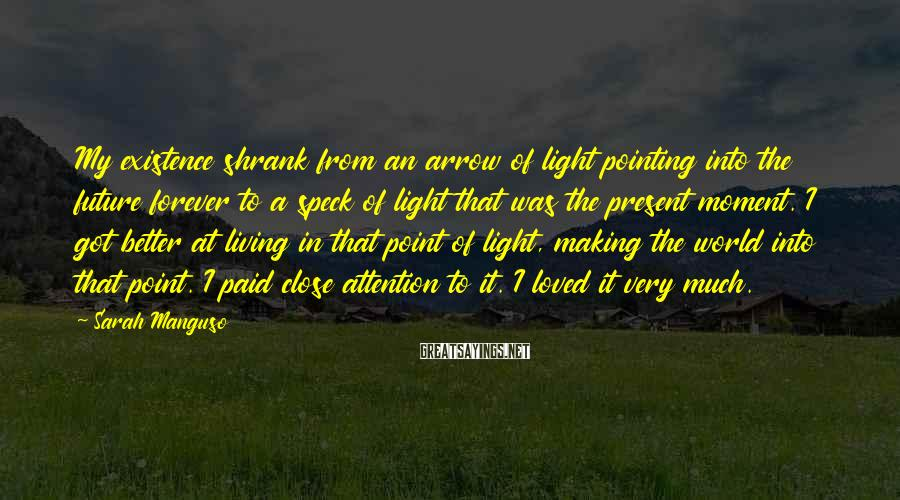 Sarah Manguso Sayings: My existence shrank from an arrow of light pointing into the future forever to a