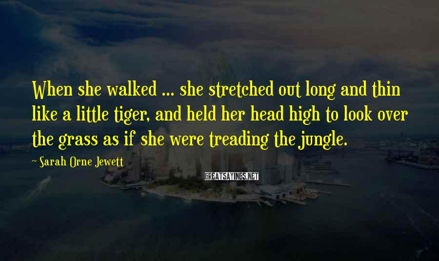 Sarah Orne Jewett Sayings: When she walked ... she stretched out long and thin like a little tiger, and