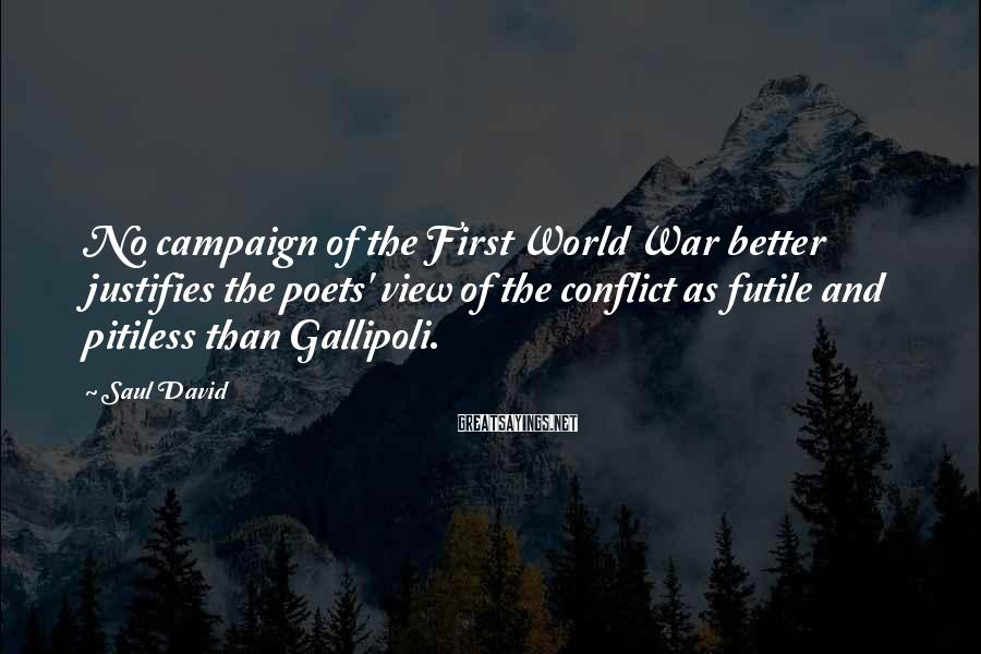 Saul David Sayings: No campaign of the First World War better justifies the poets' view of the conflict