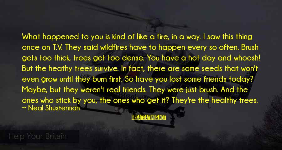 Saw You Today Sayings By Neal Shusterman: What happened to you is kind of like a fire, in a way. I saw