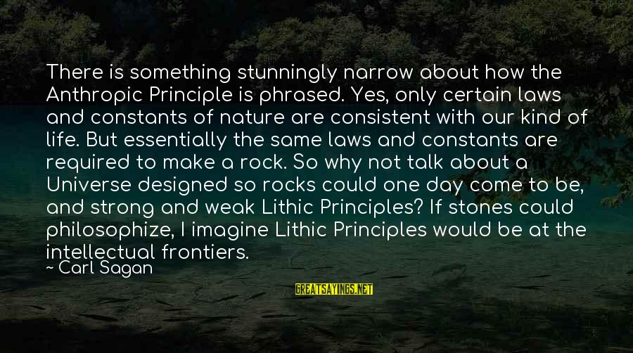 Science Carl Sagan Sayings By Carl Sagan: There is something stunningly narrow about how the Anthropic Principle is phrased. Yes, only certain