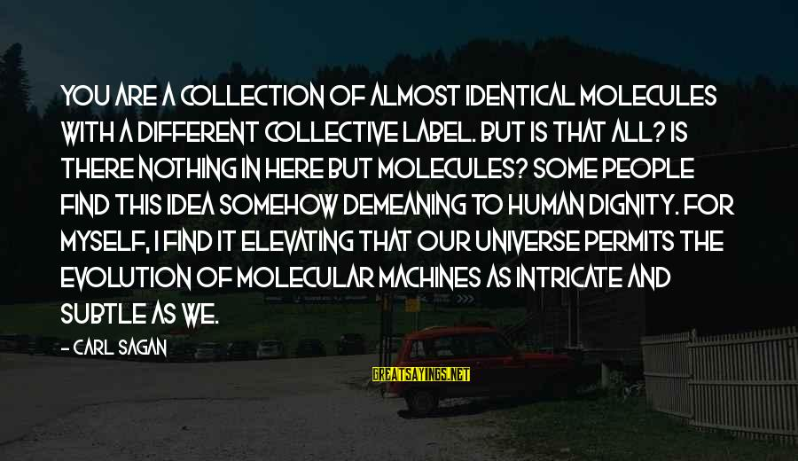 Science Carl Sagan Sayings By Carl Sagan: You are a collection of almost identical molecules with a different collective label. But is