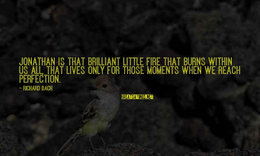 Scorpio Tattoo Sayings By Richard Bach: Jonathan is that brilliant little fire that burns within us all, that lives only for
