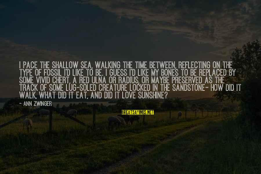 Sea Creature Sayings By Ann Zwinger: I pace the shallow sea, walking the time between, reflecting on the type of fossil