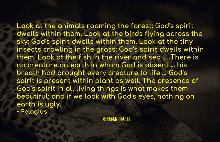 Sea Creature Sayings By Pelagius: Look at the animals roaming the forest: God's spirit dwells within them. Look at the
