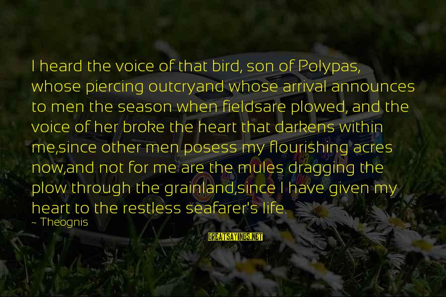Seafarer's Sayings By Theognis: I heard the voice of that bird, son of Polypas, whose piercing outcryand whose arrival