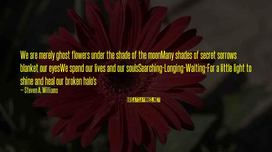 Searching Quotes And Sayings By Steven A. Williams: We are merely ghost flowers under the shade of the moonMany shades of secret sorrows