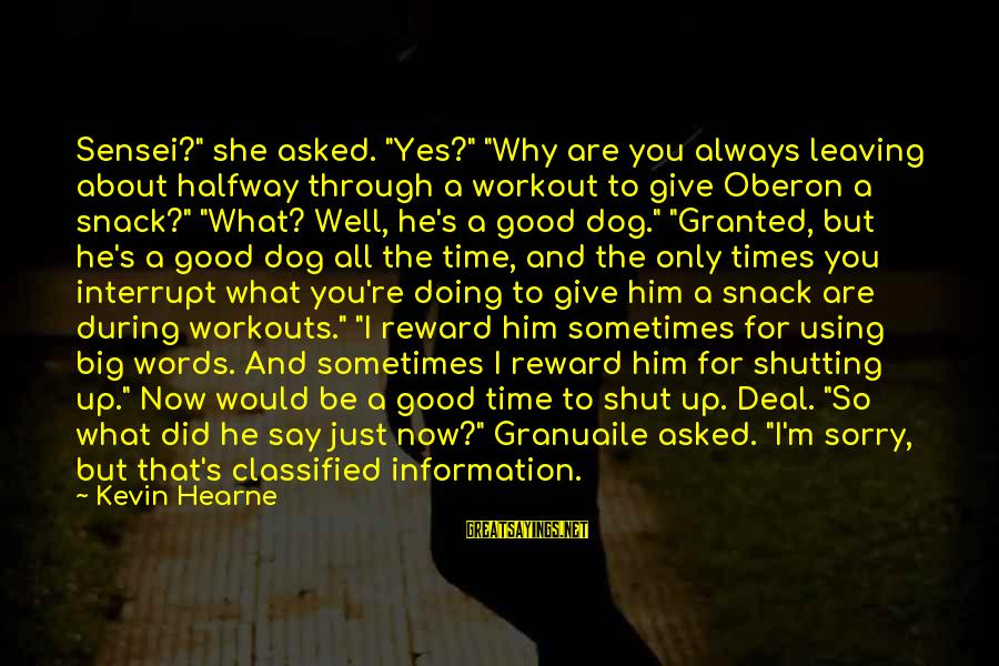 "Sensei's Sayings By Kevin Hearne: Sensei?"" she asked. ""Yes?"" ""Why are you always leaving about halfway through a workout to"