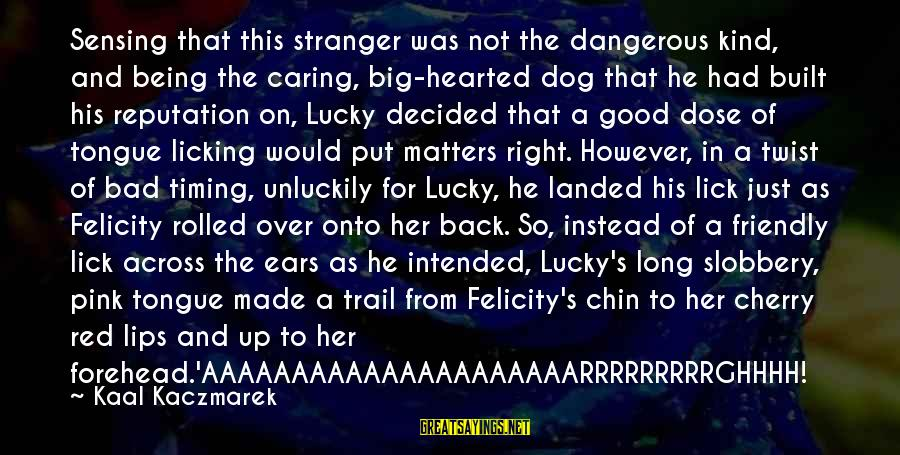 Sensing Sayings By Kaal Kaczmarek: Sensing that this stranger was not the dangerous kind, and being the caring, big-hearted dog