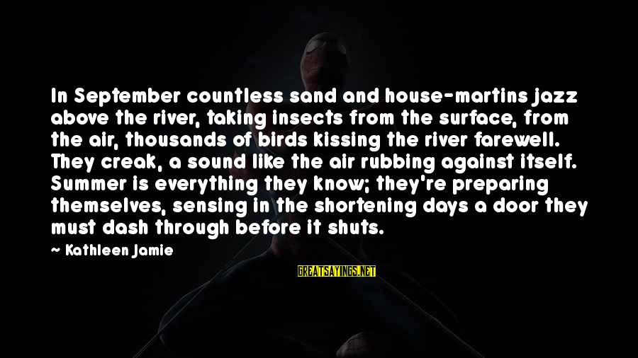 Sensing Sayings By Kathleen Jamie: In September countless sand and house-martins jazz above the river, taking insects from the surface,