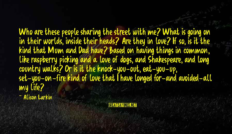 Sharing Life And Love Sayings By Alison Larkin: Who are these people sharing the street with me? What is going on in their