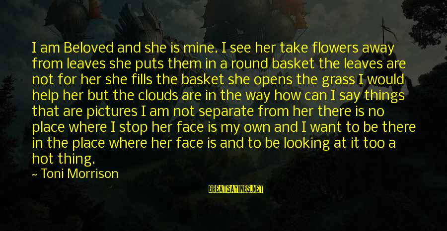 She Is Not Mine Sayings By Toni Morrison: I am Beloved and she is mine. I see her take flowers away from leaves