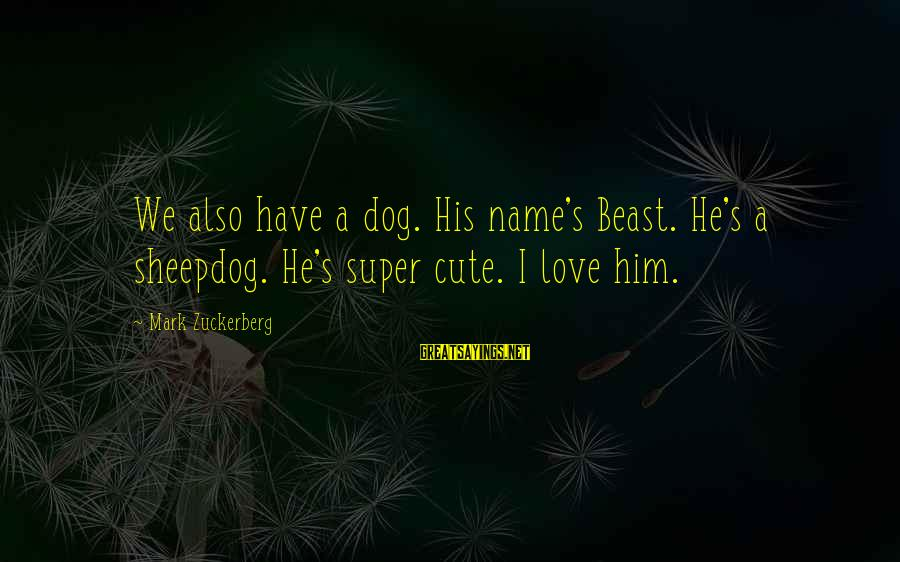 Sheepdog Sayings By Mark Zuckerberg: We also have a dog. His name's Beast. He's a sheepdog. He's super cute. I