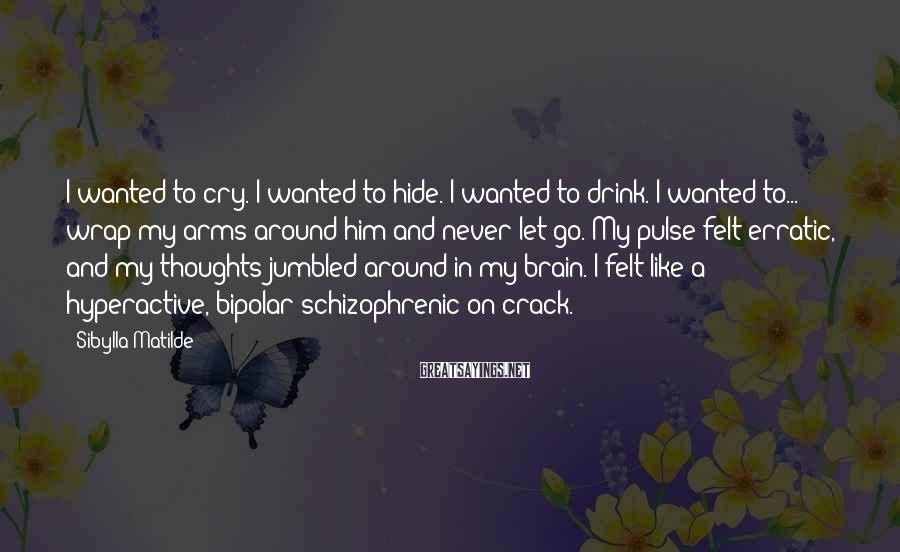 Sibylla Matilde Sayings: I wanted to cry. I wanted to hide. I wanted to drink. I wanted to...