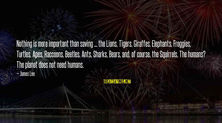 Siegfried Wagner Sayings By James Lee: Nothing is more important than saving ... the Lions, Tigers, Giraffes, Elephants, Froggies, Turtles, Apes,