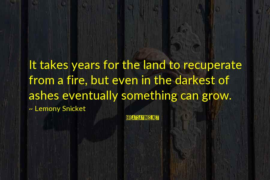 Siegfried Wagner Sayings By Lemony Snicket: It takes years for the land to recuperate from a fire, but even in the