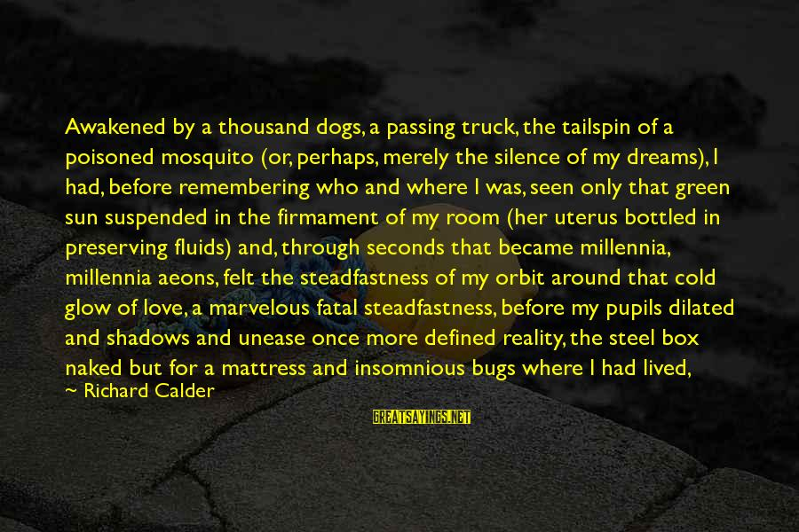 Silence And Death Sayings By Richard Calder: Awakened by a thousand dogs, a passing truck, the tailspin of a poisoned mosquito (or,