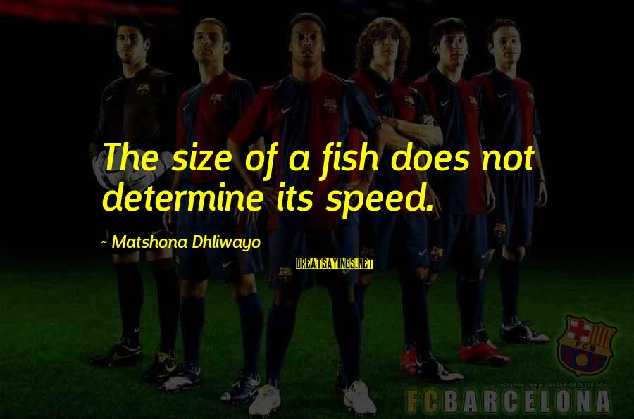 Size Quotes And Sayings By Matshona Dhliwayo: The size of a fish does not determine its speed.