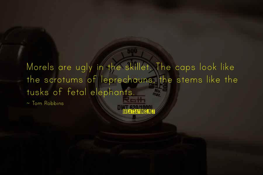 Skillet's Sayings By Tom Robbins: Morels are ugly in the skillet. The caps look like the scrotums of leprechauns, the