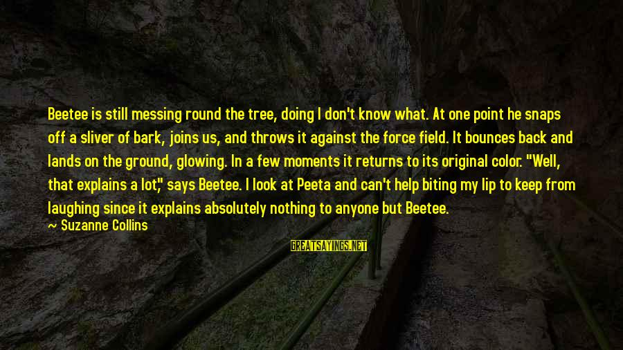 Sliver Sayings By Suzanne Collins: Beetee is still messing round the tree, doing I don't know what. At one point
