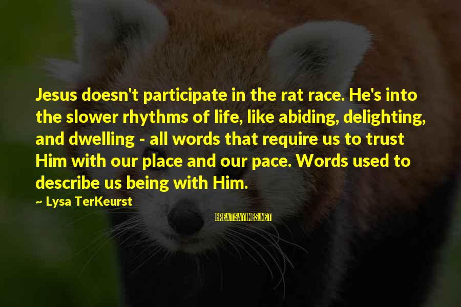 Slower Pace Of Life Sayings By Lysa TerKeurst: Jesus doesn't participate in the rat race. He's into the slower rhythms of life, like