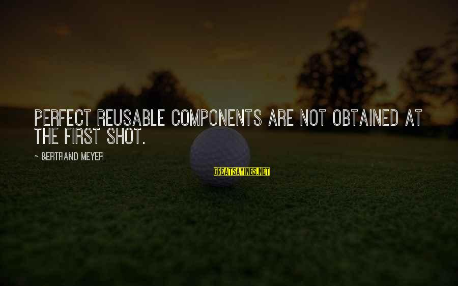 Smooch Movie Sayings By Bertrand Meyer: Perfect reusable components are not obtained at the first shot.
