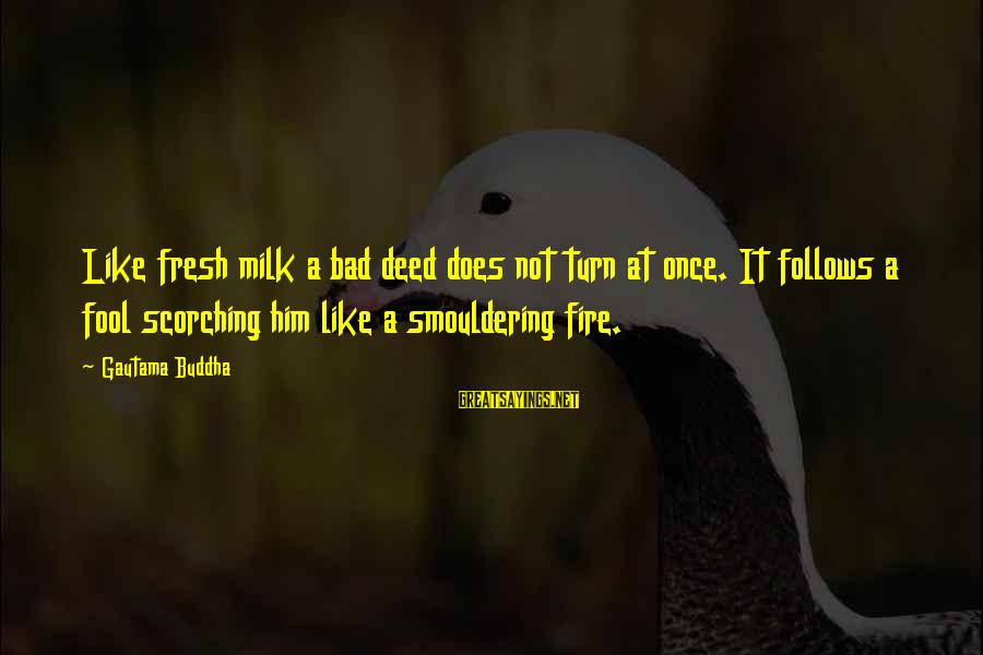 Smouldering Sayings By Gautama Buddha: Like fresh milk a bad deed does not turn at once. It follows a fool