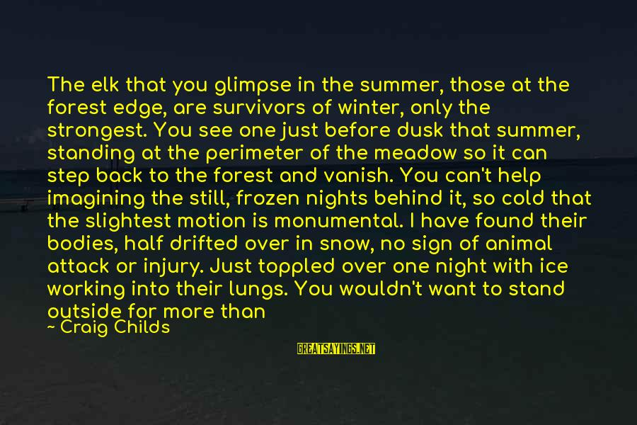 So Cold Outside Sayings By Craig Childs: The elk that you glimpse in the summer, those at the forest edge, are survivors