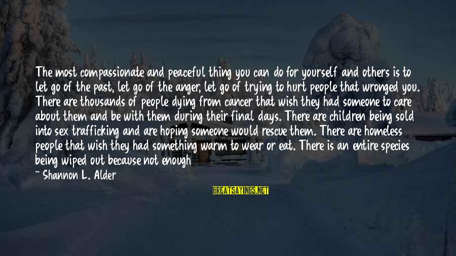 Someone Trying To Hurt You Sayings By Shannon L. Alder: The most compassionate and peaceful thing you can do for yourself and others is to
