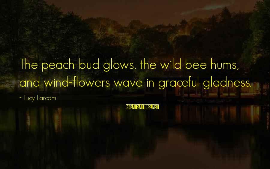 Sonder Sayings By Lucy Larcom: The peach-bud glows, the wild bee hums, and wind-flowers wave in graceful gladness.