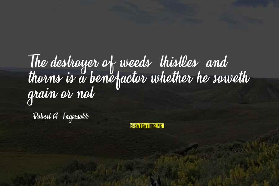 Soweth Sayings By Robert G. Ingersoll: The destroyer of weeds, thistles, and thorns is a benefactor whether he soweth grain or