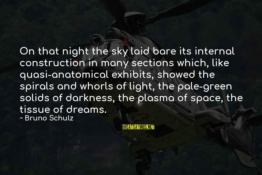 Space Sayings By Bruno Schulz: On that night the sky laid bare its internal construction in many sections which, like