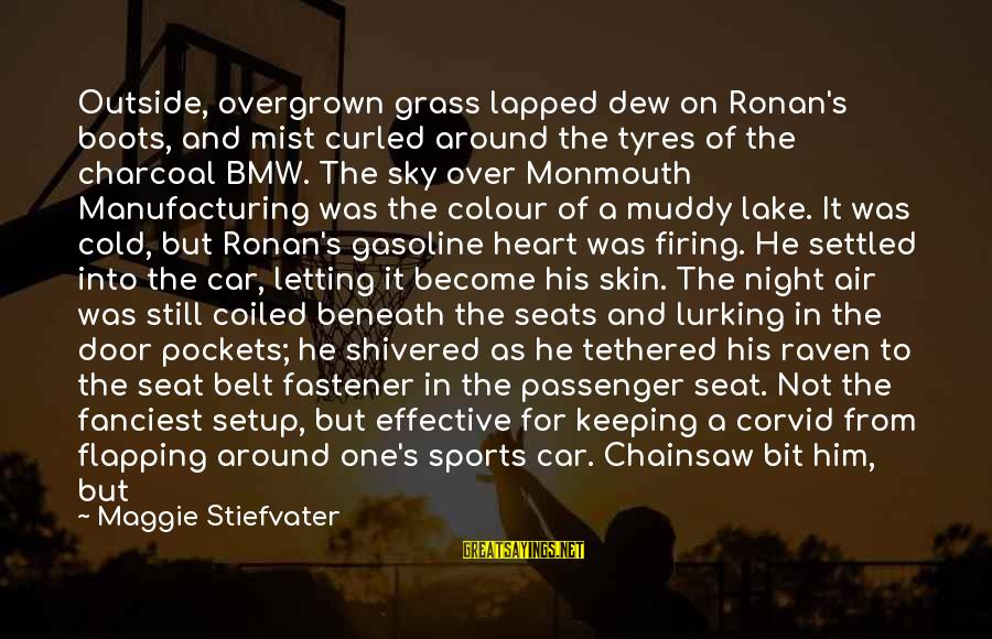 Sports And Heart Sayings By Maggie Stiefvater: Outside, overgrown grass lapped dew on Ronan's boots, and mist curled around the tyres of