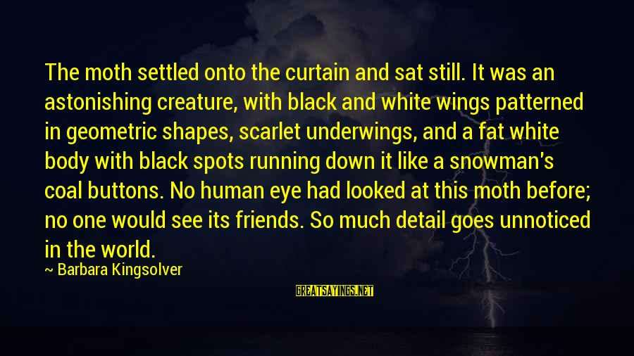 Spots Sayings By Barbara Kingsolver: The moth settled onto the curtain and sat still. It was an astonishing creature, with