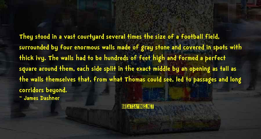 Spots Sayings By James Dashner: They stood in a vast courtyard several times the size of a football field, surrounded