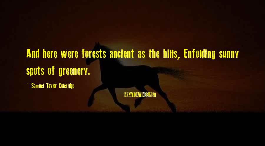 Spots Sayings By Samuel Taylor Coleridge: And here were forests ancient as the hills, Enfolding sunny spots of greenery.