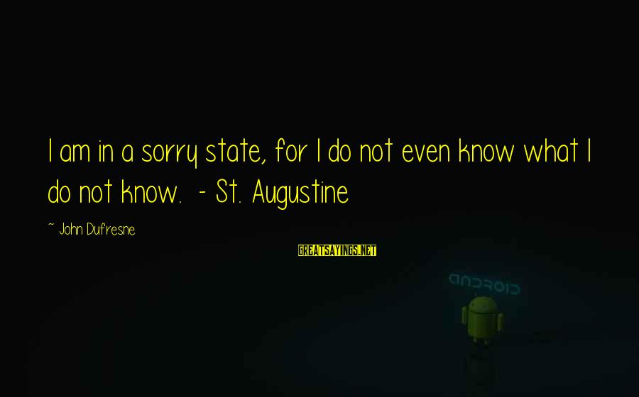 St Augustine Sayings By John Dufresne: I am in a sorry state, for I do not even know what I do
